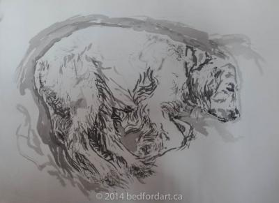 ink, dog, life, drawing
