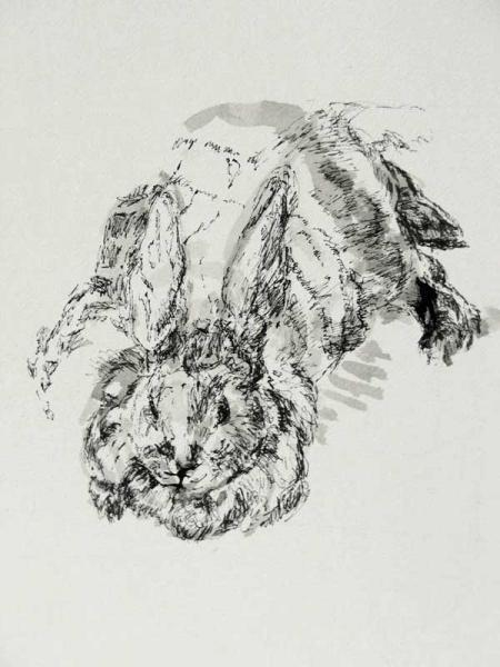 """Bobby's Pet Rabbit"", drawing in ink"